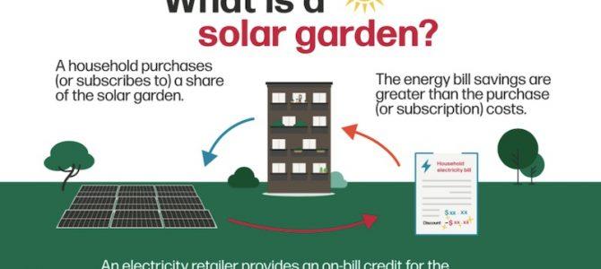 "Australia's biggest ""solar garden"" opens for membership in NSW Riverina"